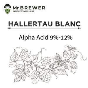 Hallertau-Blanc