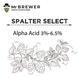 Spalter-Select