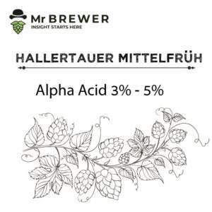 Hallertauer-Mittelfrüh