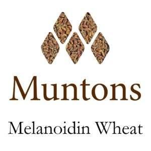 לתת Muntons Melanoidin Wheat Malt